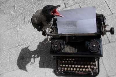 4917197-bird-on-typewriter