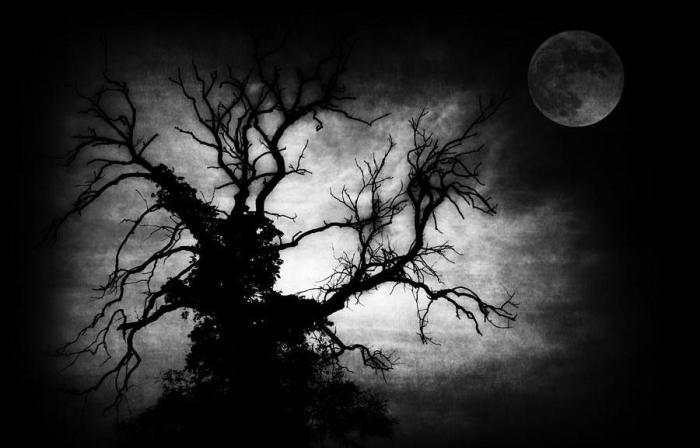 nightmare-tree-siobhan-brennan-raymond