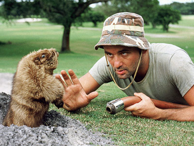 Caddyshack-Murray-gopher_l