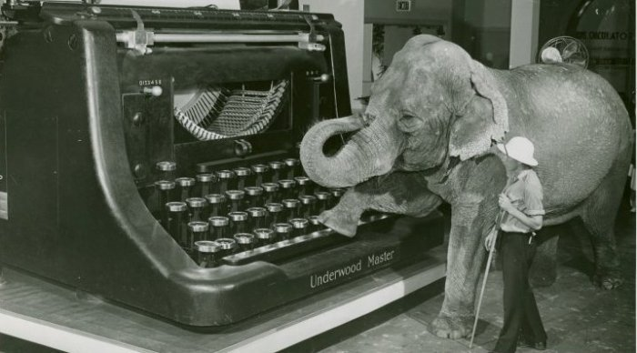 Typewriter-and-Elephant