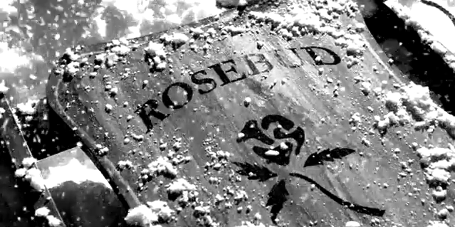 rosebud, citizen kane, christmas, sled